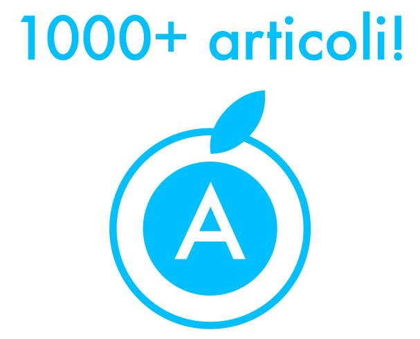1000 articoli